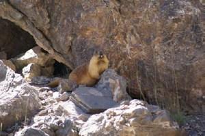 Paysage du Pamir